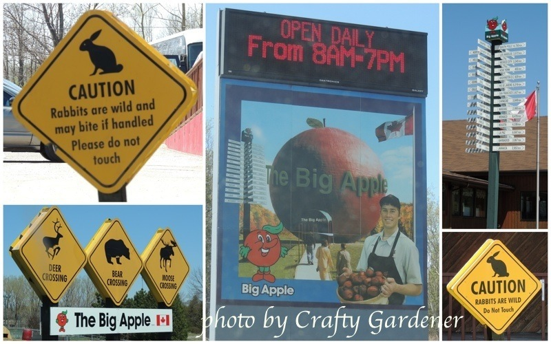 bigapplesigns1a