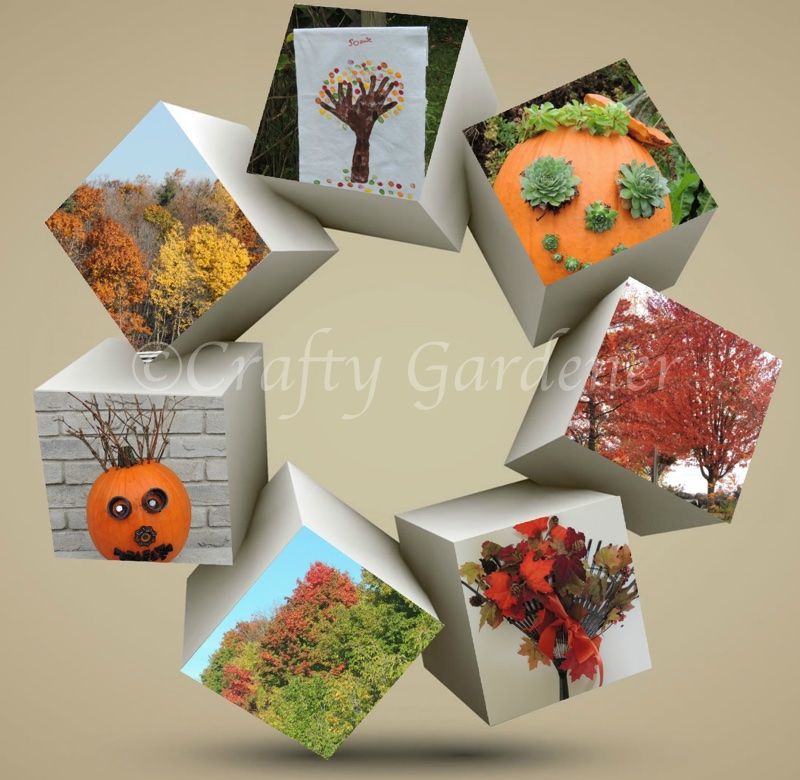Fall at craftygardener.ca