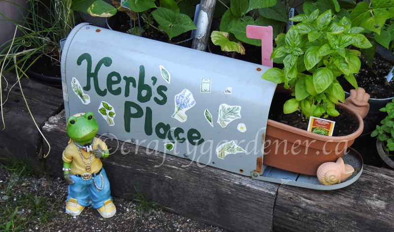 Herb if Herb's Place at craftygardener.ca