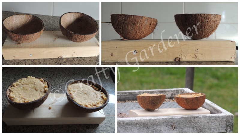 making a coconut feeder at craftygardener.ca