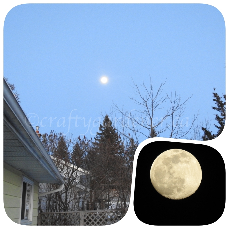 the February full moon at craftygardener.ca