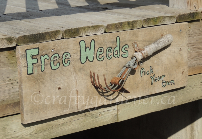 how to make a free weeds sign at craftygardener.ca