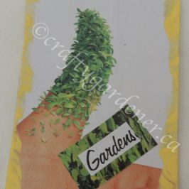 making gardening related thankyou cards at craftygardener.ca