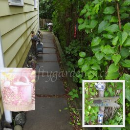 Welcome to the garden at craftygardener.ca