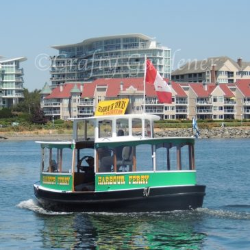 The Harbour Ferries