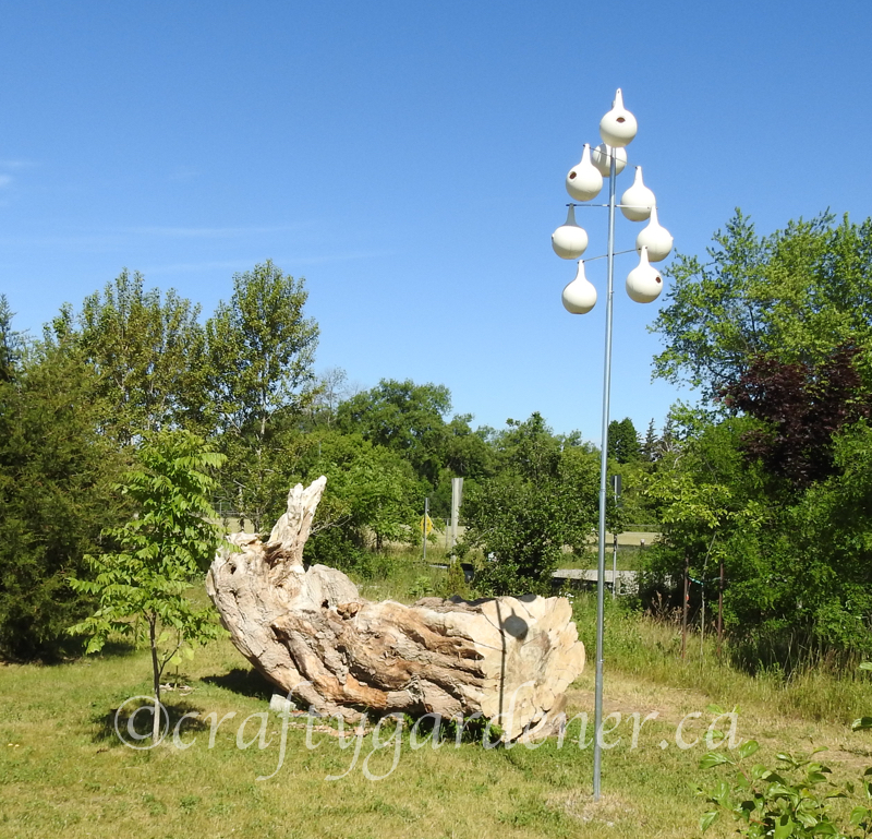 a visit to the Cobourg Ecology Garden by craftygardener.ca
