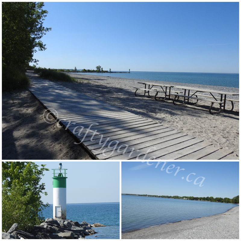 craftygardener.ca visits Wellington Beach, Ontario
