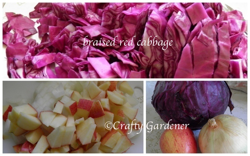 red cabbage8a