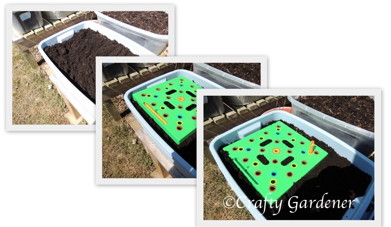 using a seeding square at craftygardener.ca