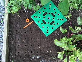 seeding square from http://www.seedingsquare.ca/