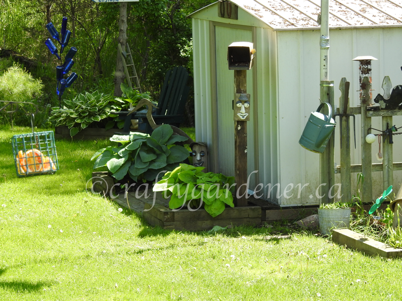 the shed garden at craftygardener.ca