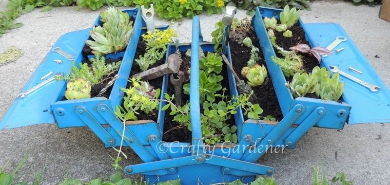an old metal toolbox converted to a planter